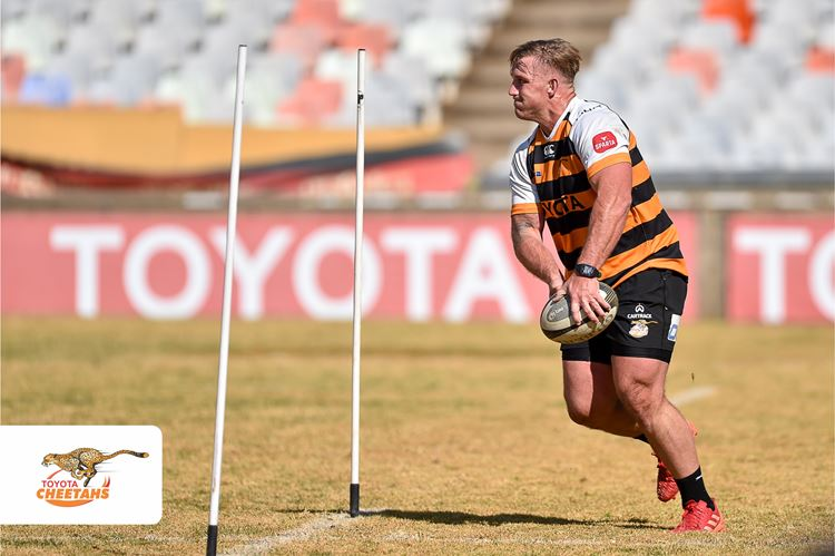 Exciting Green and Gold mix for Castle Lager Springbok Showdown