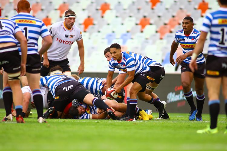 Carling Currie Cup Preview – Semi-finals
