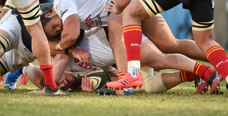 The Carling Currie Cup Bulletin #12