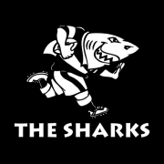 Cell C Sharks XV