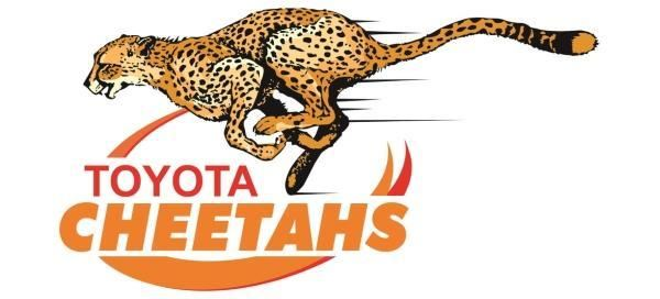 Toyota Cheetahs in Guinness PRO14 and Currie Cup